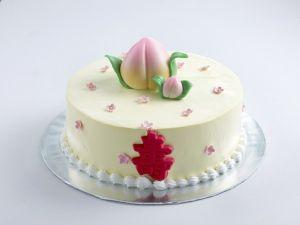 Longevity Peach Cream Cake Sponge Base 1kg